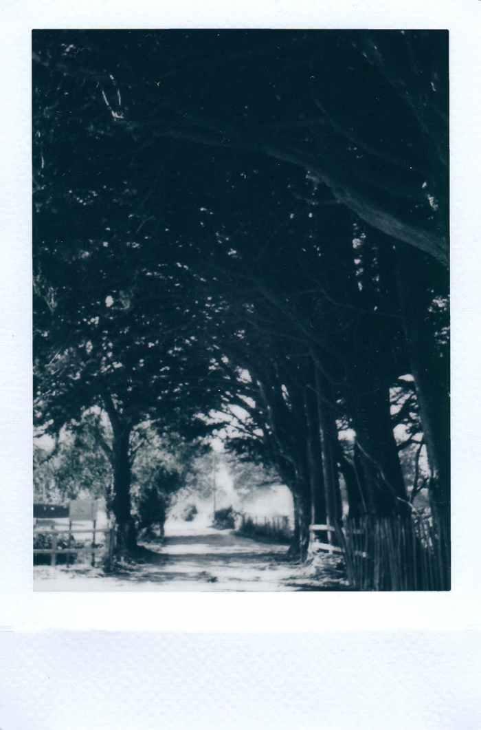 art black and white film landscape