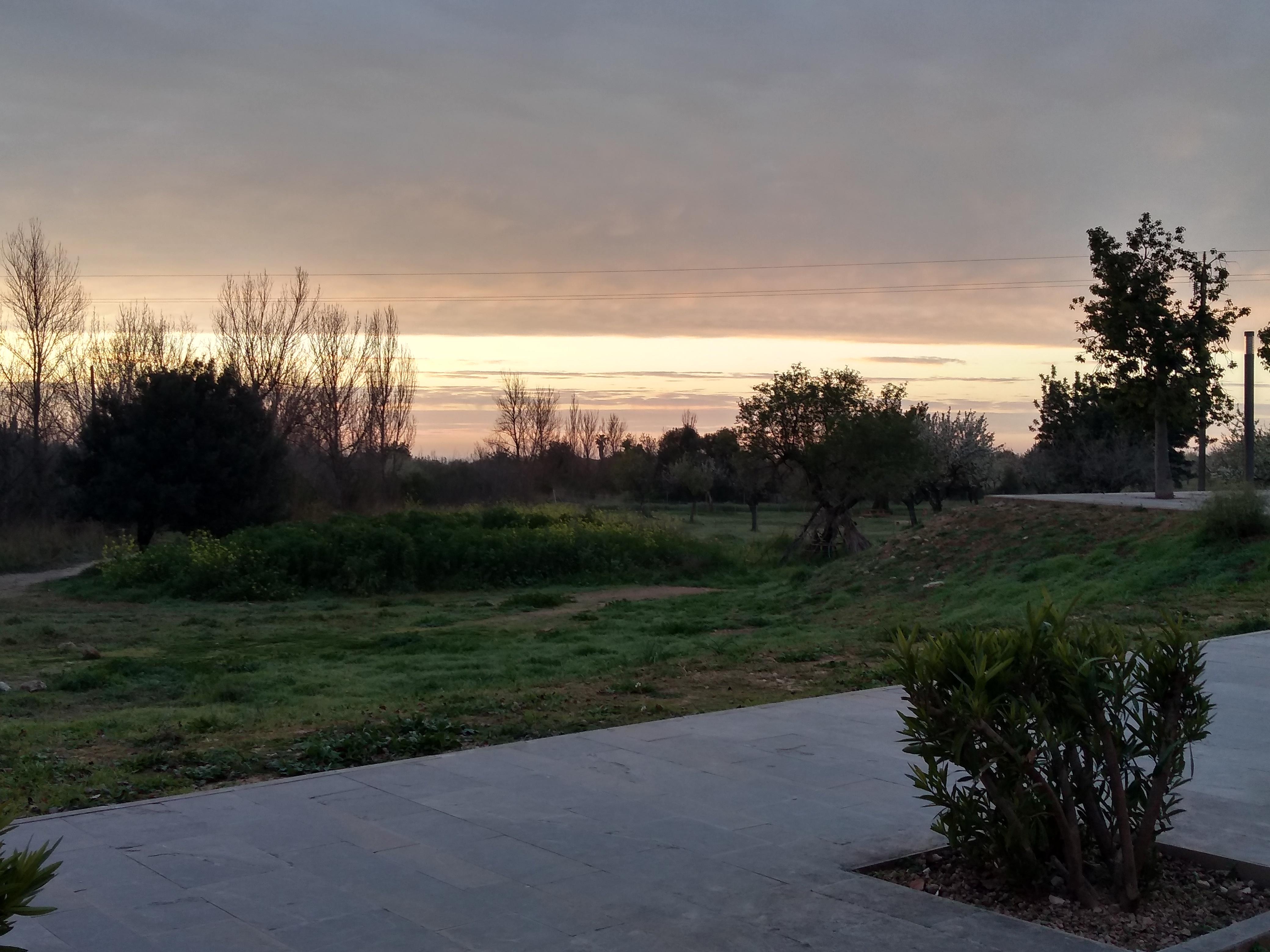 Amanecer Mallorca