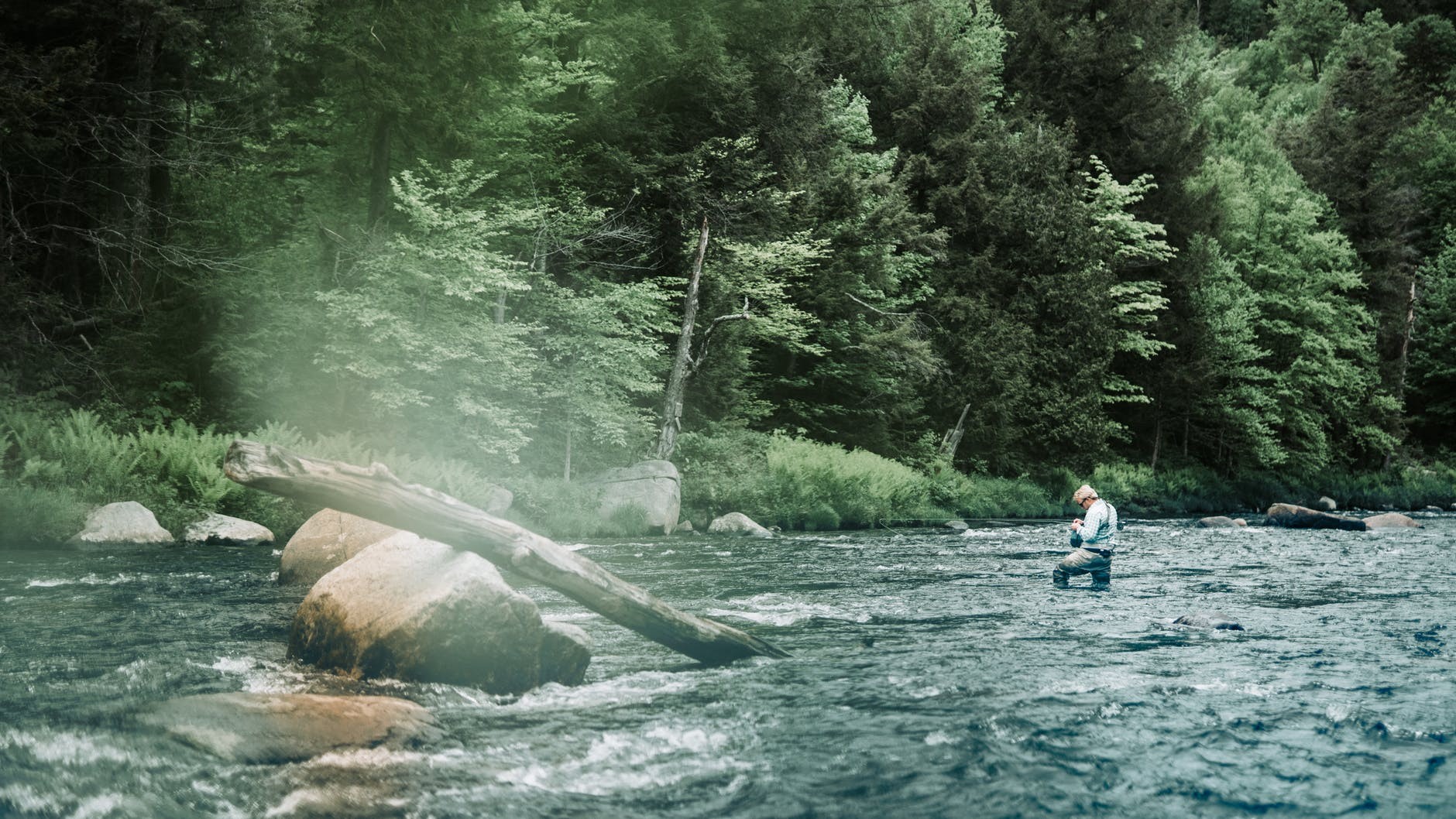 photo of person walking on the river