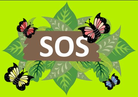 Disello -SOS - Cartel y hojas